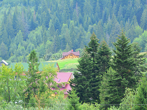 Oriavchyk — cheap holidays in the Carpathians